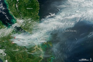 indonesia_tmo_2013170